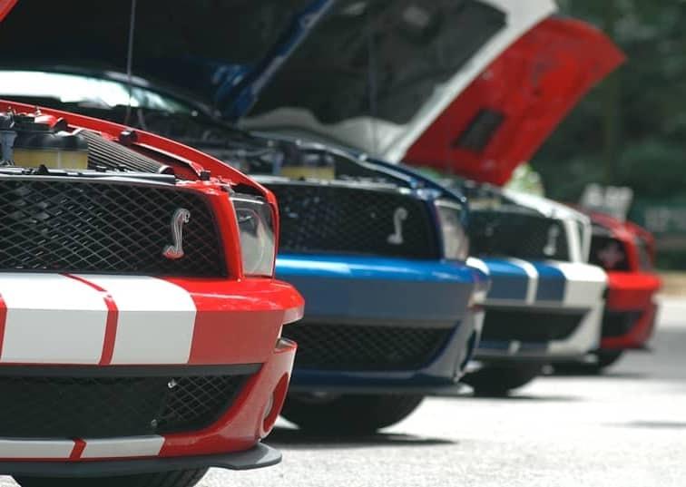 Mustang RoundUp: Ponycars On Parade