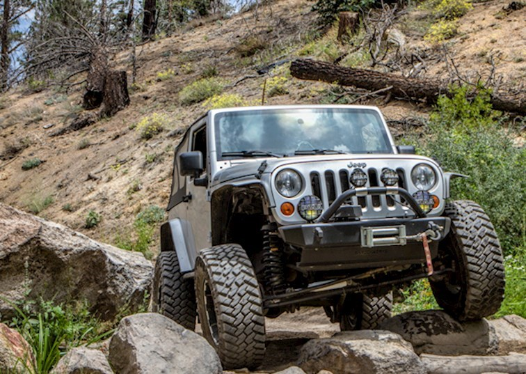 Big Bear's Holcomb Creek Trail