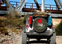 two wide mojave on the trail holiday feature