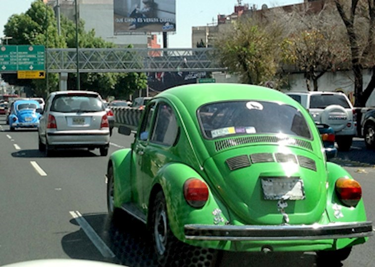 Mama Says: Mexico City is Buggin' Out!