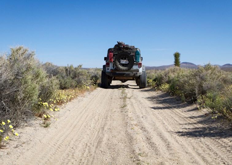 Trail Riding Inscription Canyon and Rainbow Basin