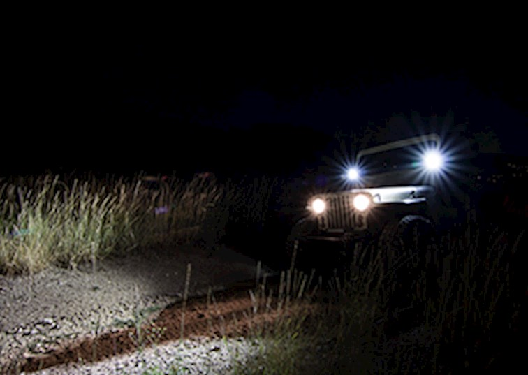 Let There Be Light with Dually LEDs
