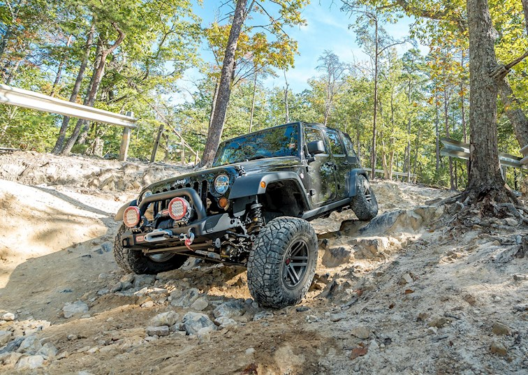 Ridge Grappling Uwharrie National Forest