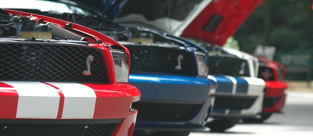Mustang Roundup Ponycars On Parade Drivingline