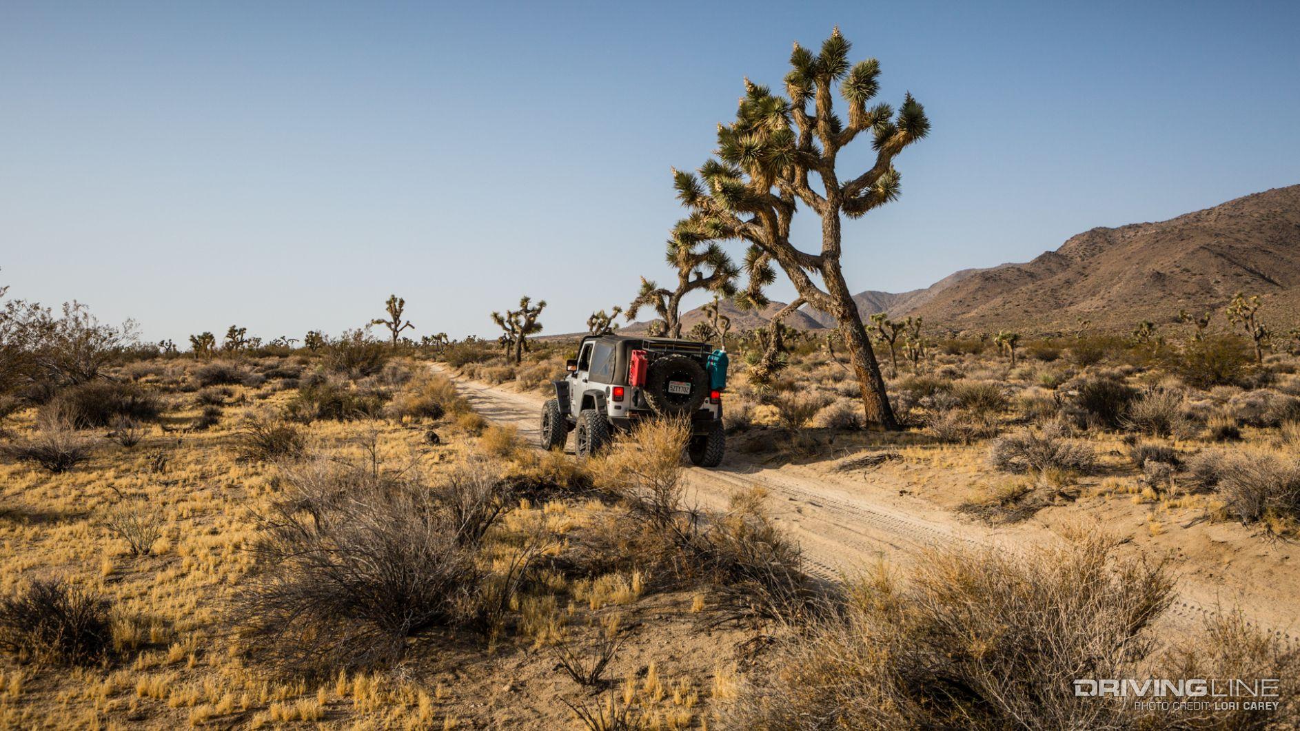 Berdoo Canyon Trail Review | DrivingLine