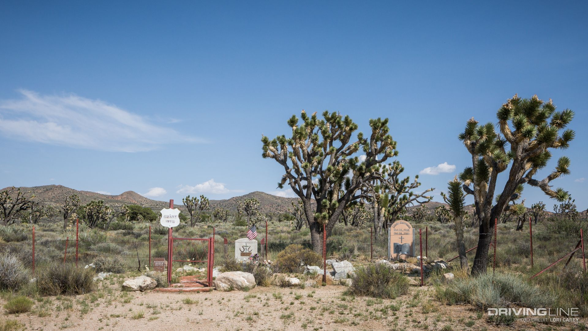 history of the mojave desert Stefanie ritter is our resident biologist at the museum and is a wealth of information on the topic of natural science please feel free to email her your questions.