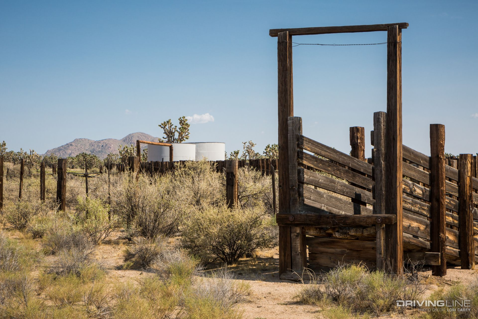 history of the mojave desert The brown ranch: predecessor of the rancho verde by richard d thompson--rumor has run strong through the decades about the first occupant of the famed ranch.